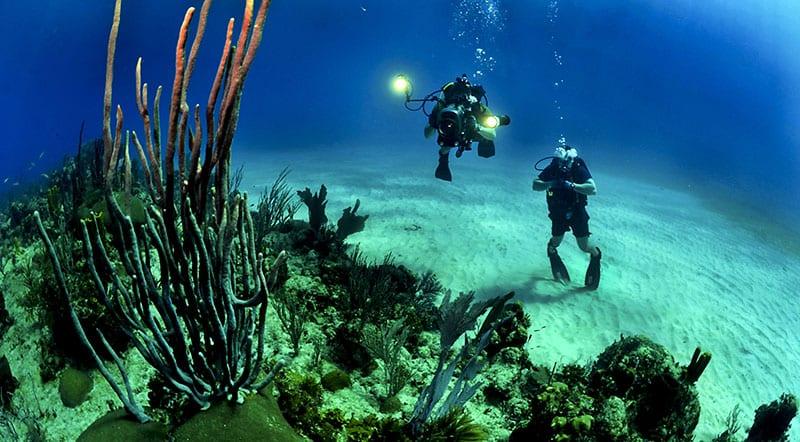 snorkeling buceo aventura en Cuba